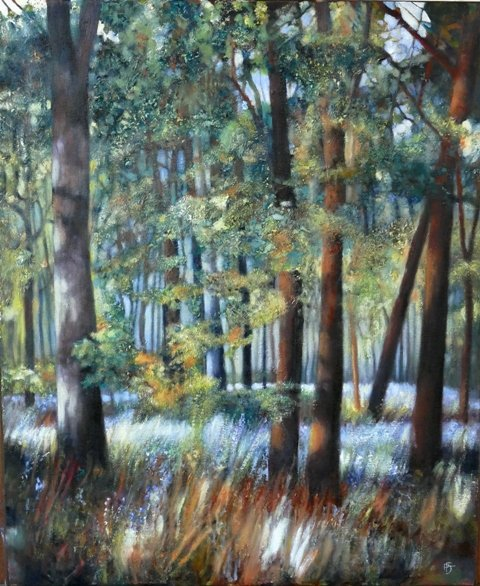 Woodlands Near Me