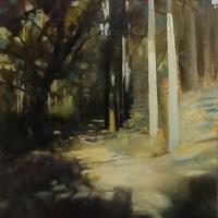 Camino. Eucalyptus Forest