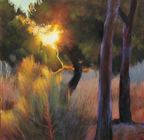 Sunset in the Pines, Galapagar