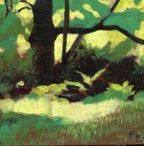forest-study