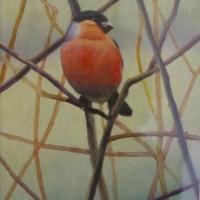 Hedgerow (Bullfinch)