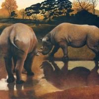 Rhinos at Dusk