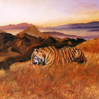 Tiger on the Edge