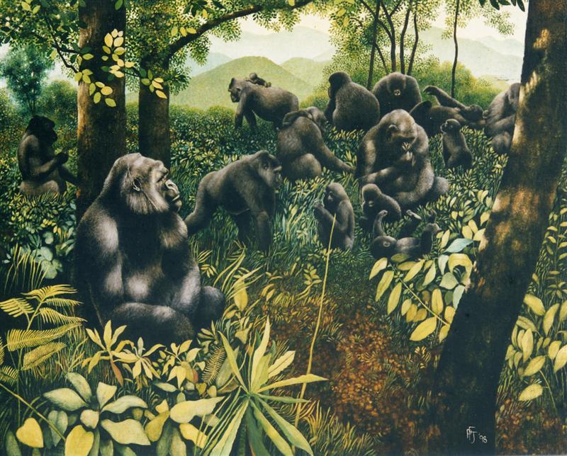 Gorillas, Bwindi National Park