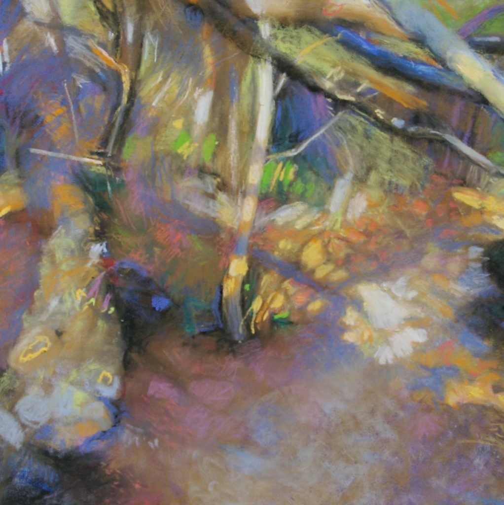 Three Pastel Paintings to be Exhibited from 6 - 28 April in Woodstock Garden Gallery, Oxford Art Societ,y Annual Members Exhibition, Woodstock Museum, Woodstock, Oxfordshire OX20 1SN